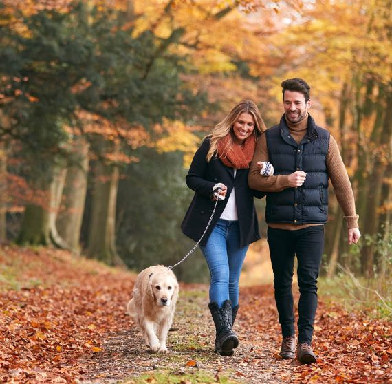 Couple walking a dog in fall leaves
